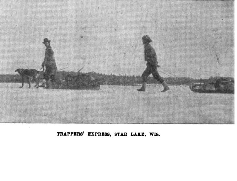 forest and stream 1895-trapper-express